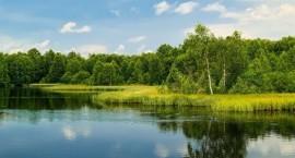 掌舵龙湖·观澜府 | 一湖归心,许您一份诗意湖居生活!