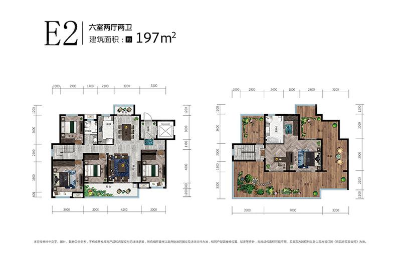 E2-6室2厅2卫-197.0㎡E2-6室2厅2卫-197.0㎡
